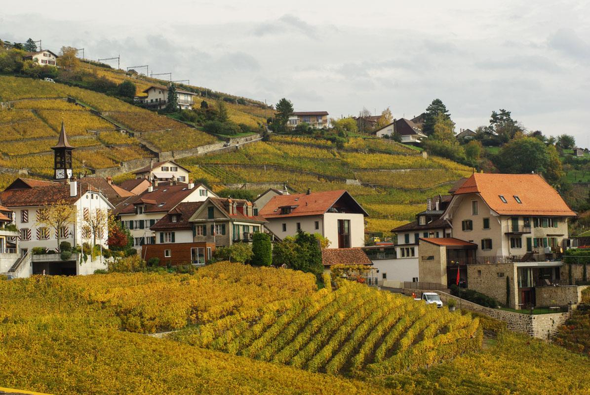 Village dans les coteaux du Lavaux - Suisse