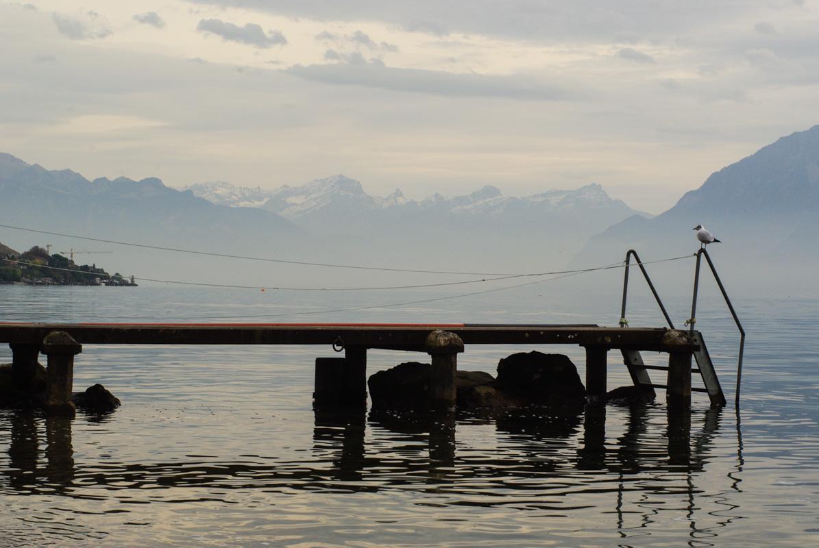 Au bord du Lac Léman côté suisse