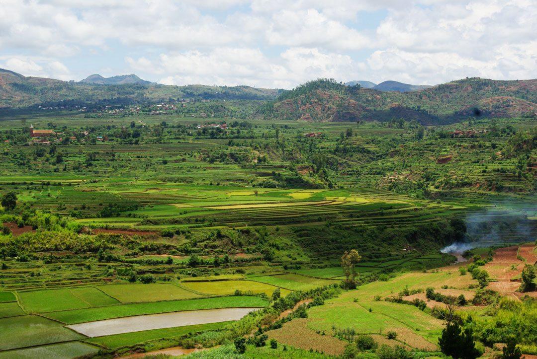 Panorama sur les rizières de Betafo - Madagascar