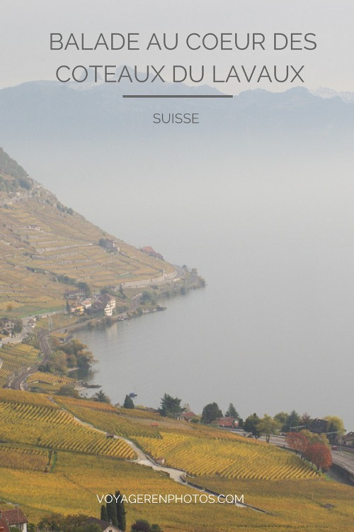 Randonnée au coeur des coteaux du Lavaux sur les rives du Lac Léman - Canton de Vaud - Suisse