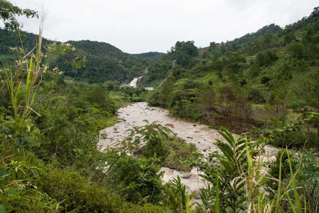 Randonnée pour aller voir la cascade du parc de Ranomafana