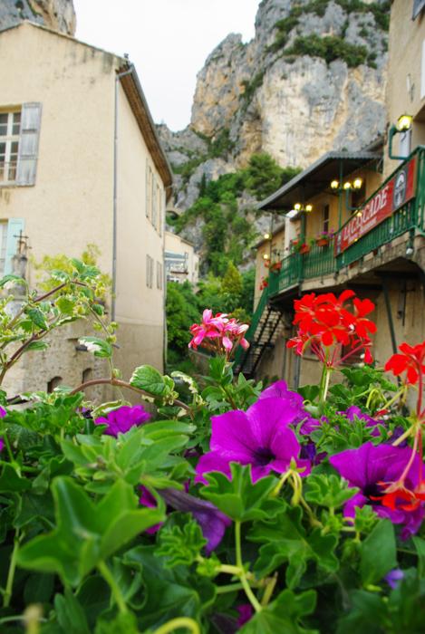 Fleurs - Moustiers Sainte Marie