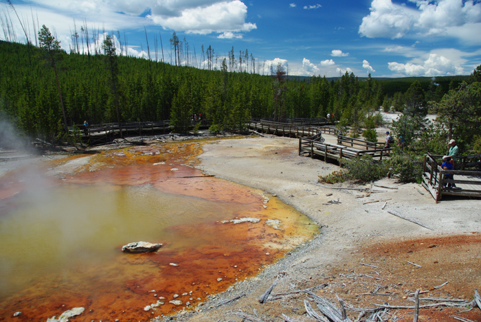 Que voir au parc national de Yellowstone ?