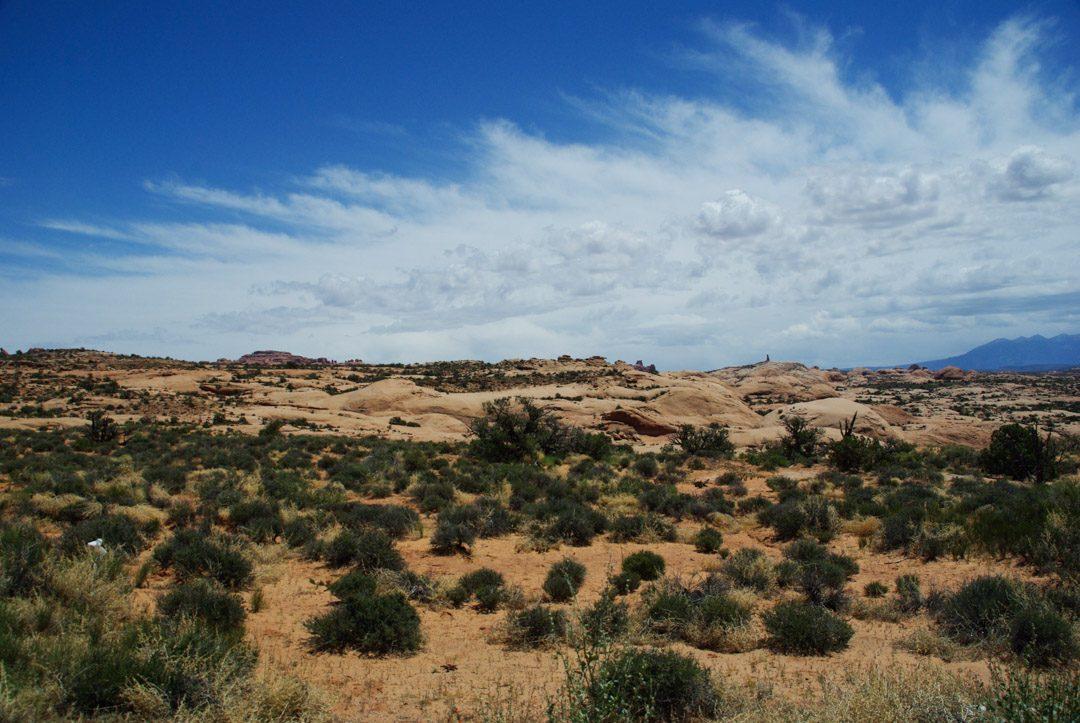 les dunes pétrifiées au parc national d'Arches dans l'utah