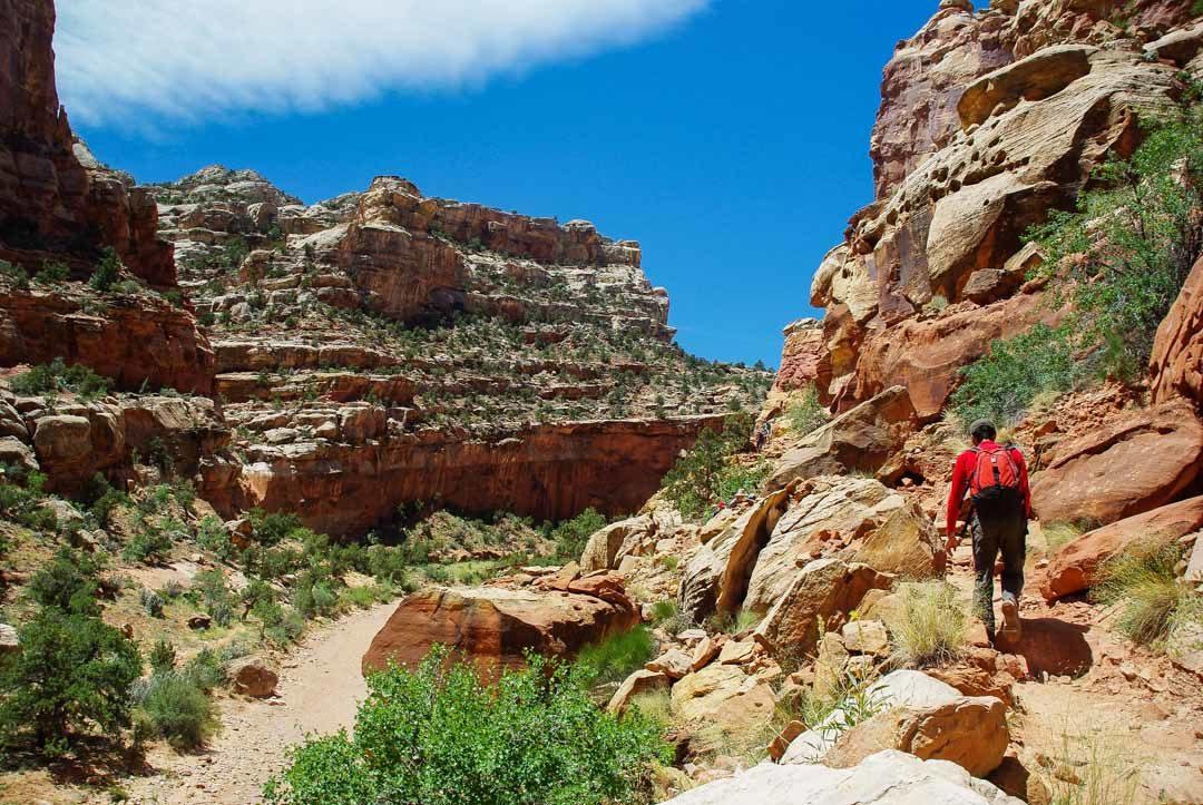 randonnée Cassidy Arch Trail - Utah