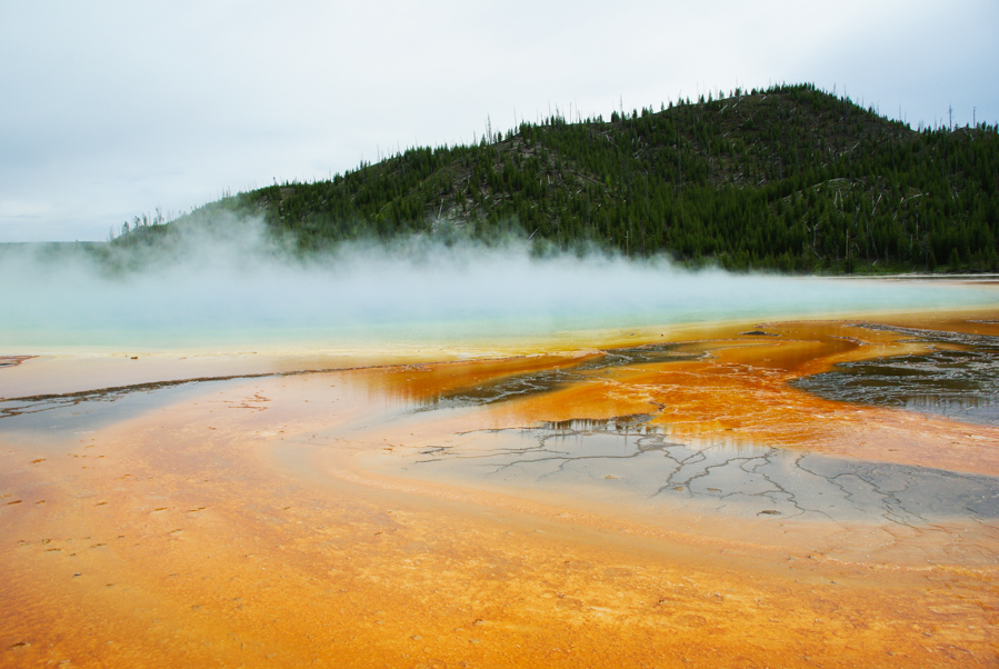 grand prismatic ring - yellowstone