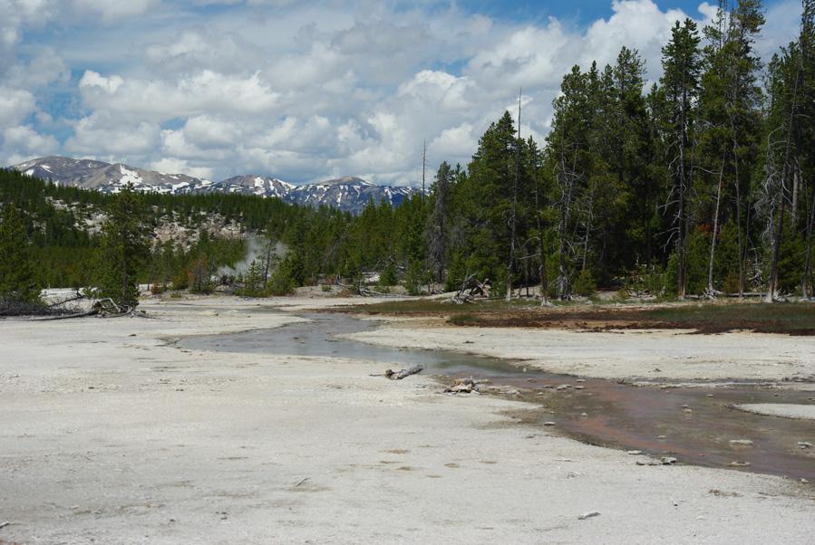 norris geyser bassin - yellowstone