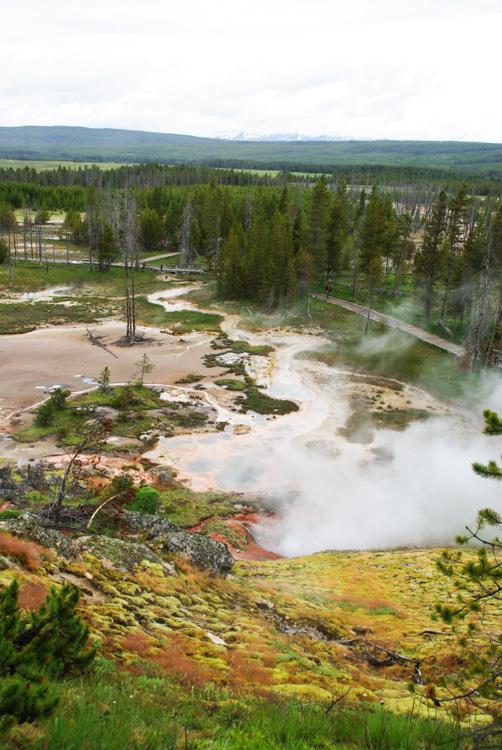 Vue Panoramique sur le site géothermique d'Artist Paint Pots - Yellowstone