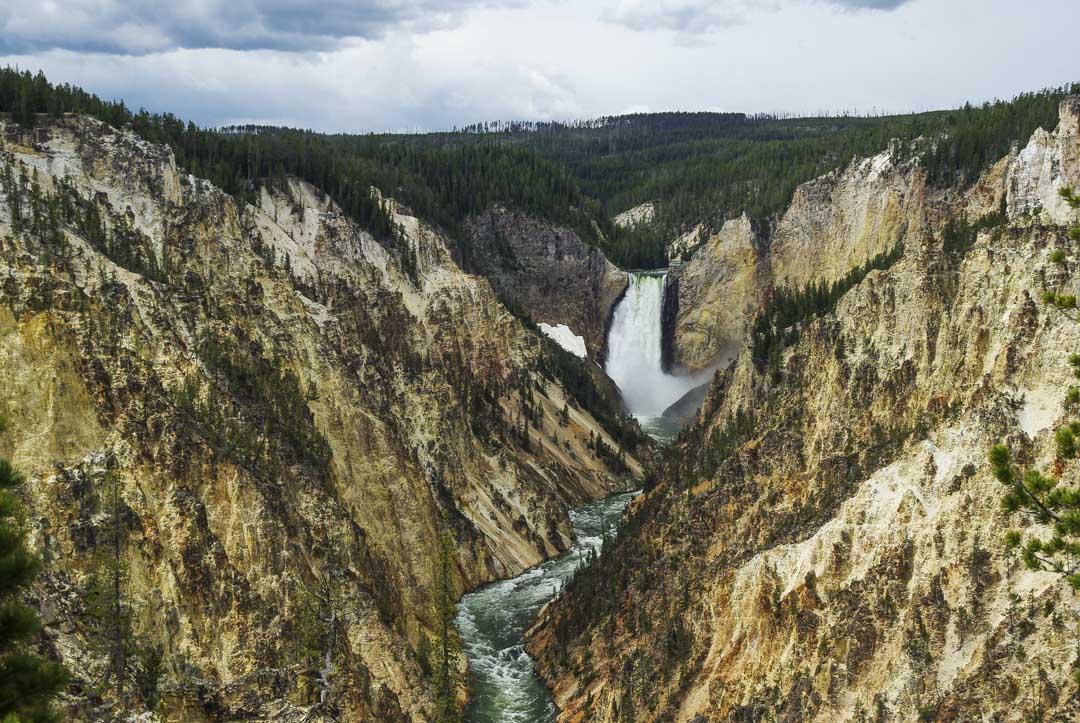 le grand canyon de Yellowstone