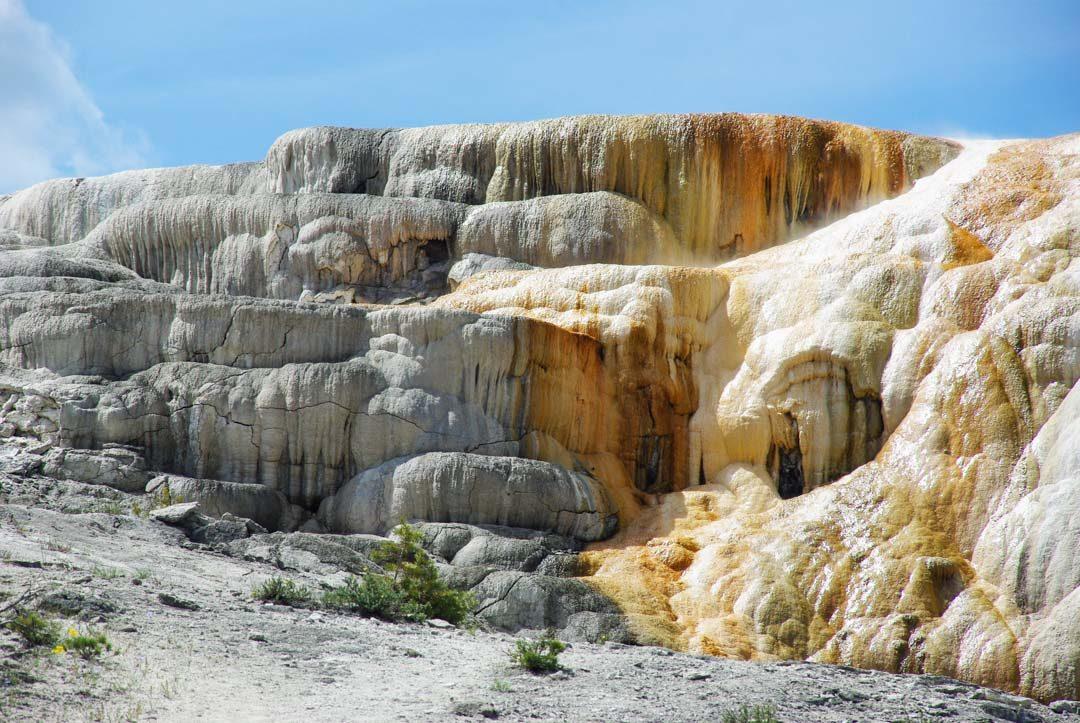 le site de Mammoth Lower Terraces à Yellowstone