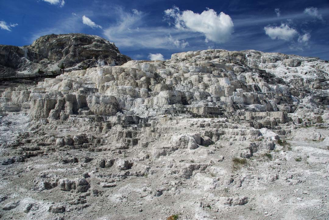 Zone morte de Mammoth Lower Terraces à Yellowstone