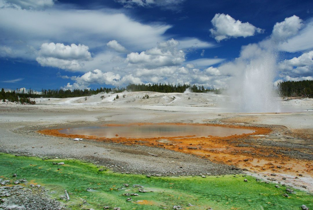 Norris Geyser Bassin - Parc National de Yellowstone - Etats-Unis