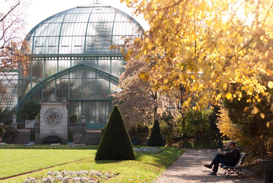 Un automne au jardin des Serres d'Auteuil