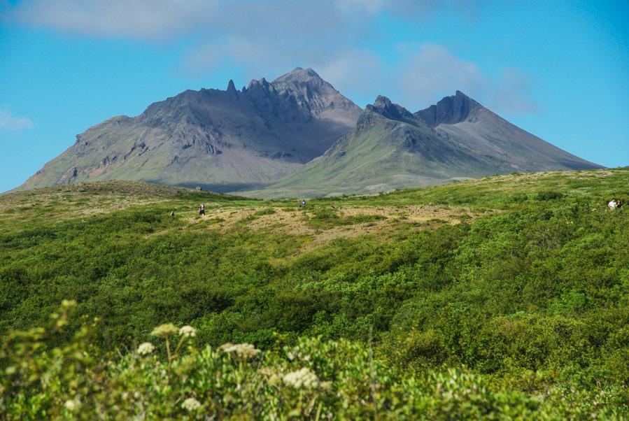 parc national de Skaftafell en Islande