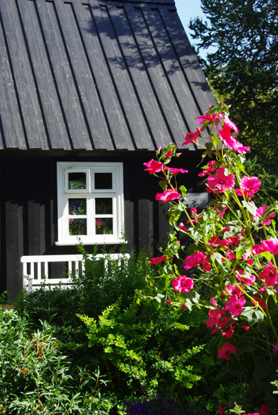 jardin botanique d'Akureyri - Islande