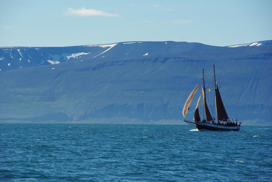 bateau voguant le long des côtes d'Islande