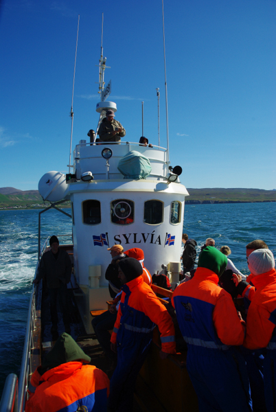 Excursion observation des baleines - Husavik - Islande