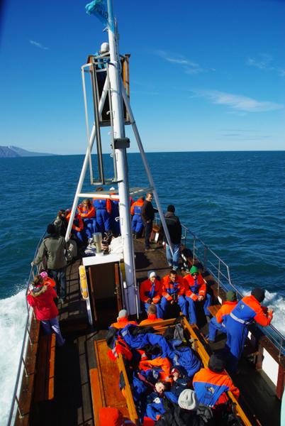 Excursion observation des baleines - Husavik - Islande