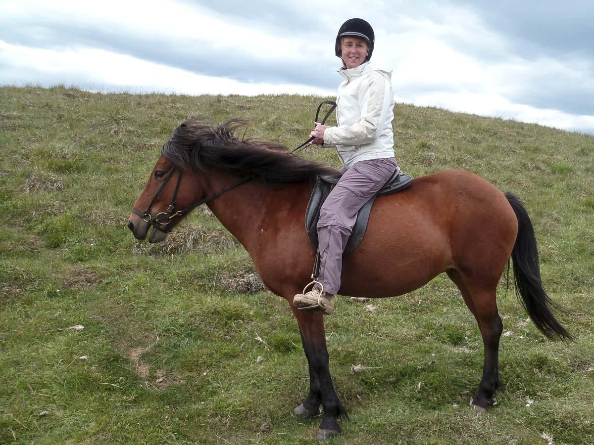 Balade en cheval islandais près de Myvatn