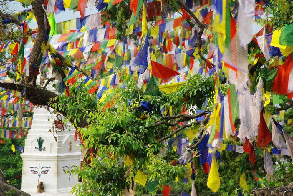 stupa ouest du sanctuaire de Swayambunath