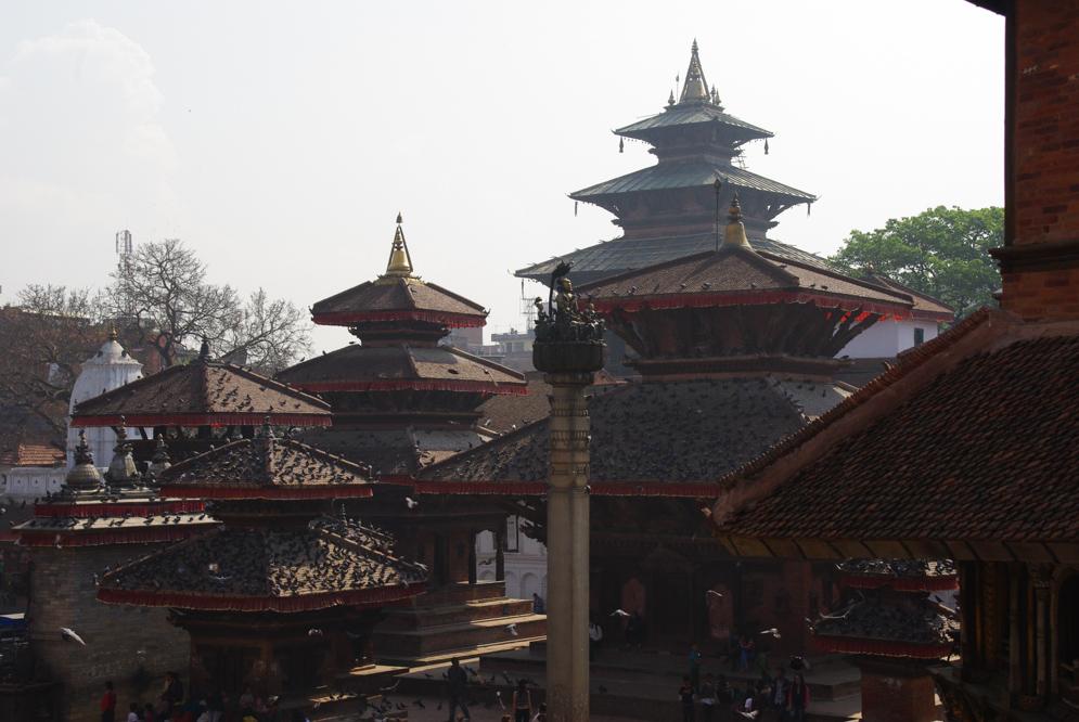 les pigeons envahissent la Durbar Square de Katmandou