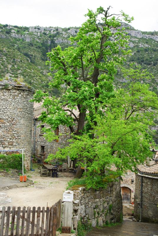 Arrivée dans le village de Navacelles