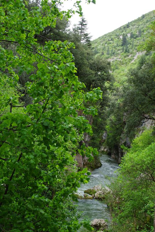 Gorges de la Vis près de Navacelles