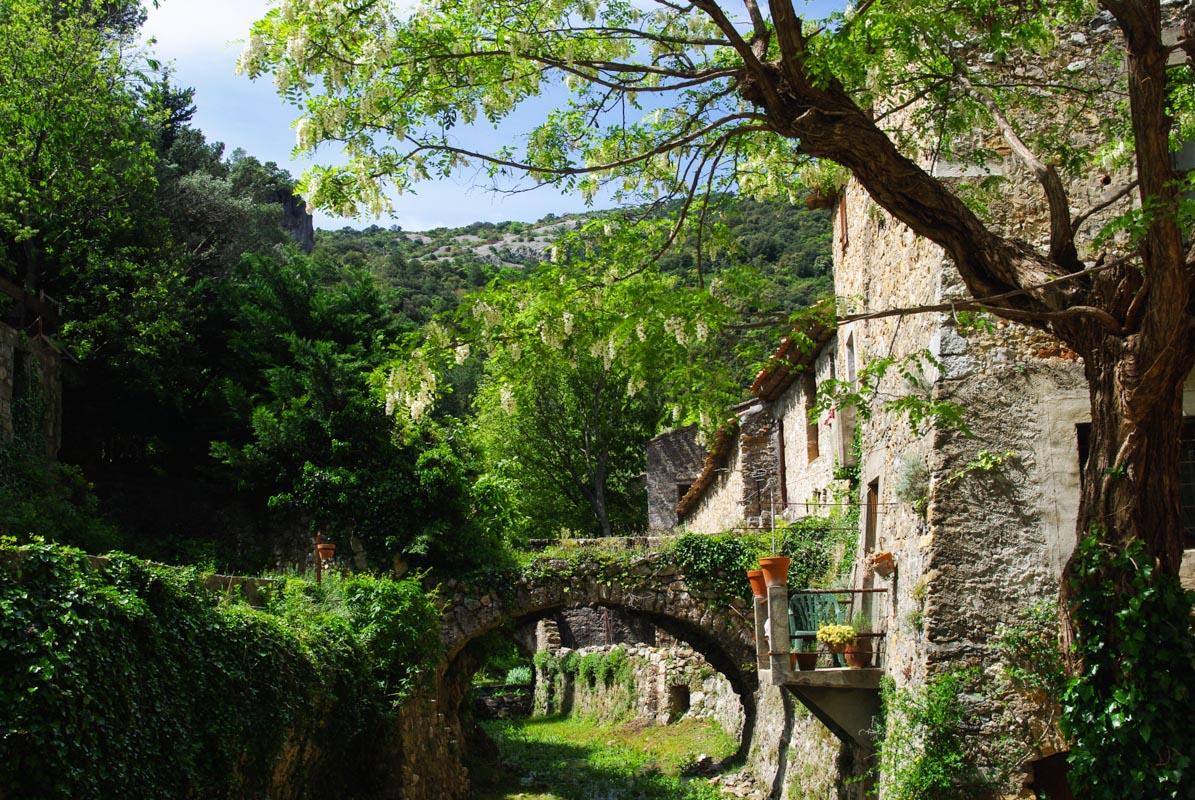 Maisons en pierres au bord du Verdus à Saint Guilhem le Désert