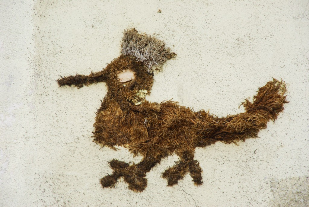 street art en lichen