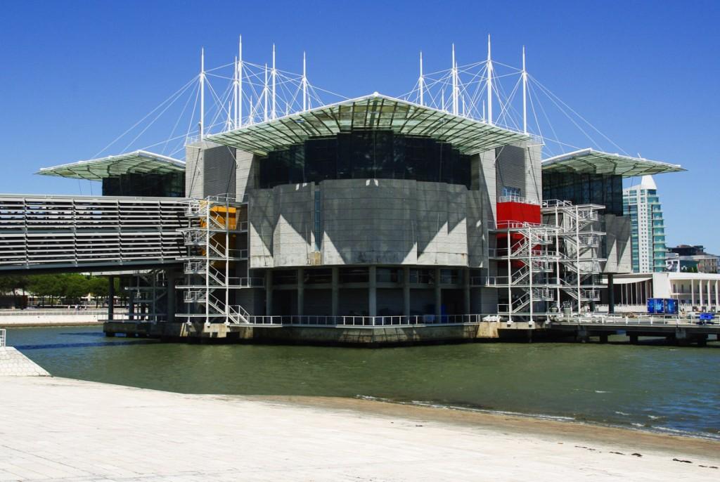 l'oceanarium de Lisbonne