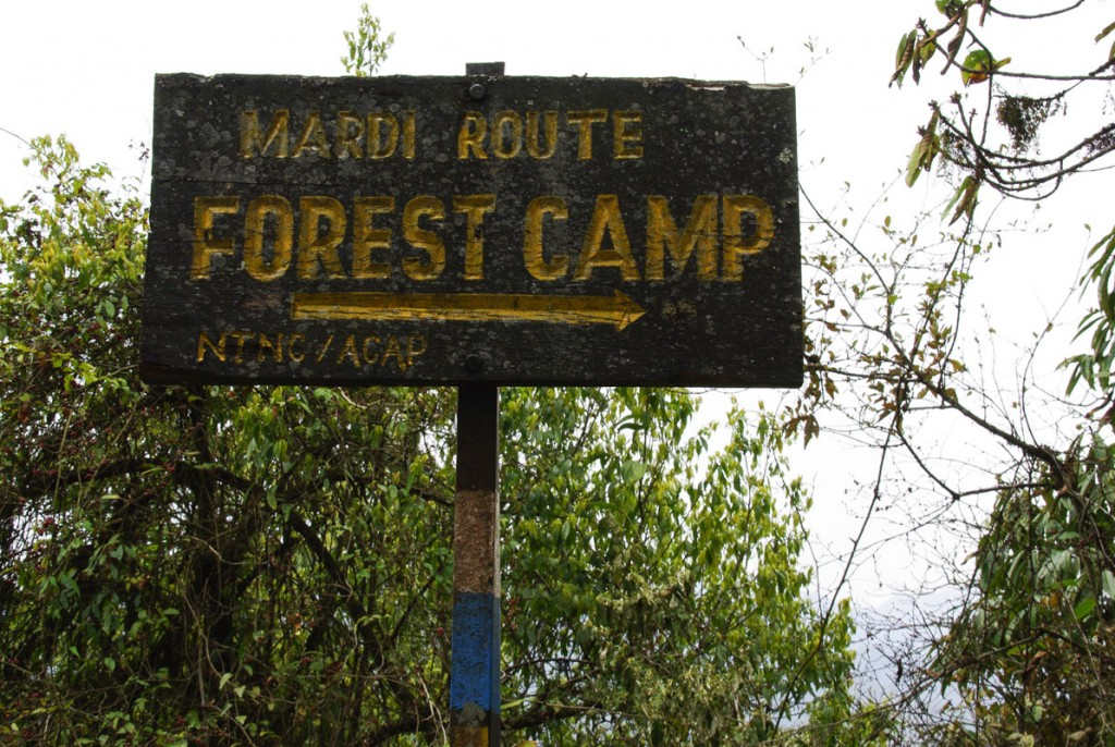 Vers Forrest Camp - Trek Mardi Himal