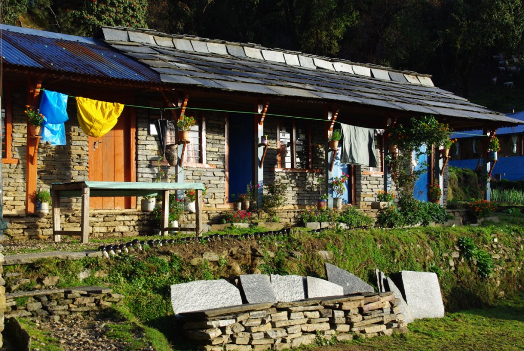 Lodge de Forest Camp - Mardi Himal