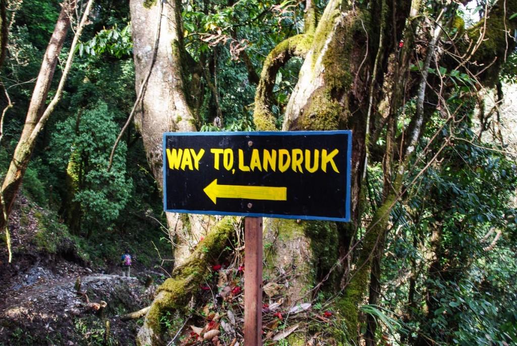 Chemin vers Landruk