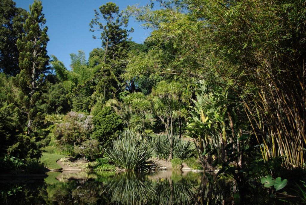 Jardin botanique Huntington à Pasadena Los Angeles