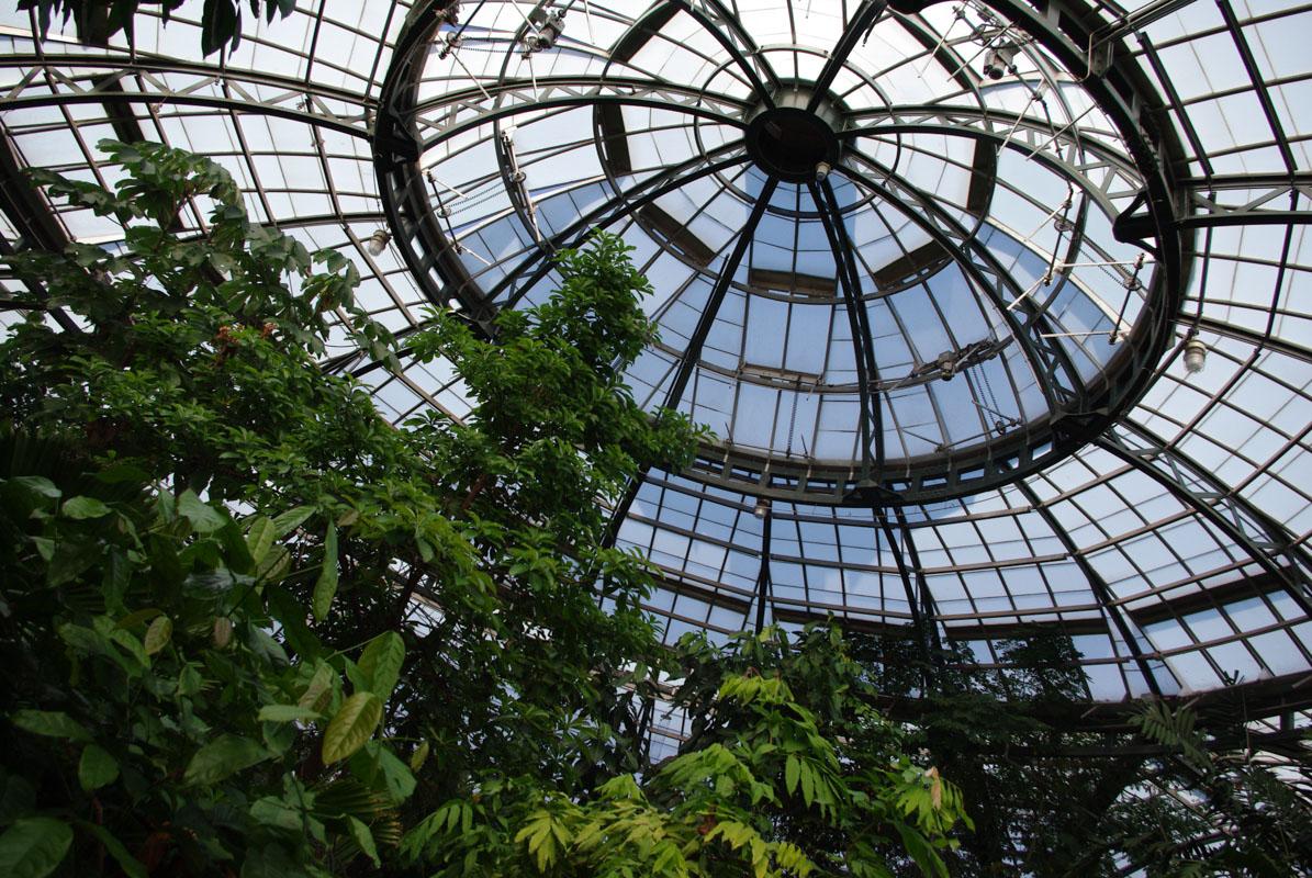 Grande serre - Huntington Botanical Gardens
