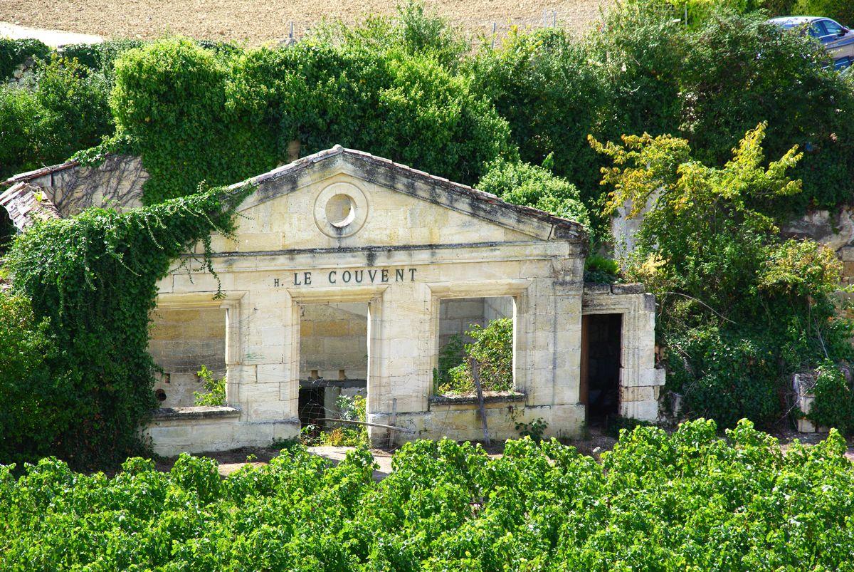 Vignes le Couvent - Saint-Emilion