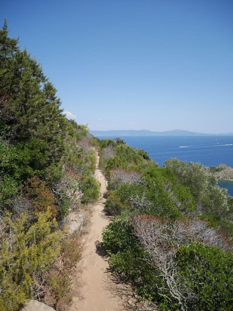 sentier de randonnée - Port Cros