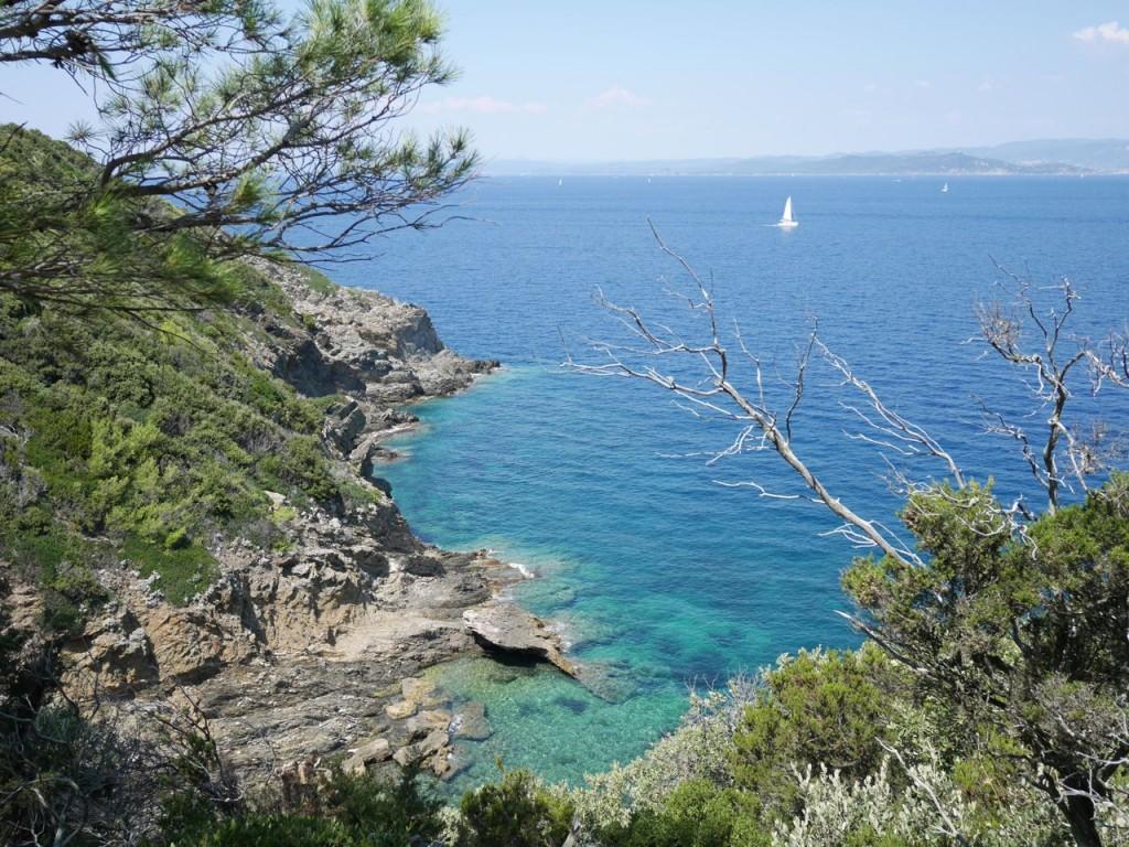 La côte - Port Cros