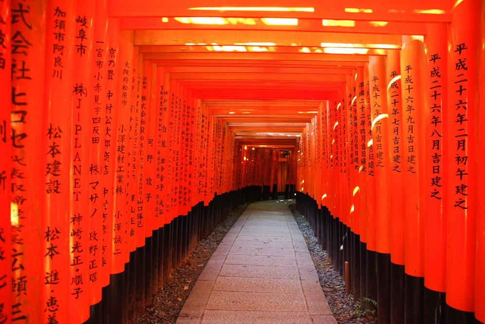 tori de Fushimi-Inari - Kyoto - Japon