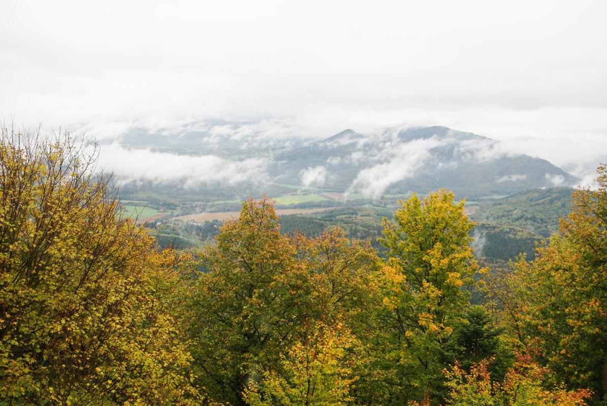 Panorama depuis le château du Haut Koenigsbourg