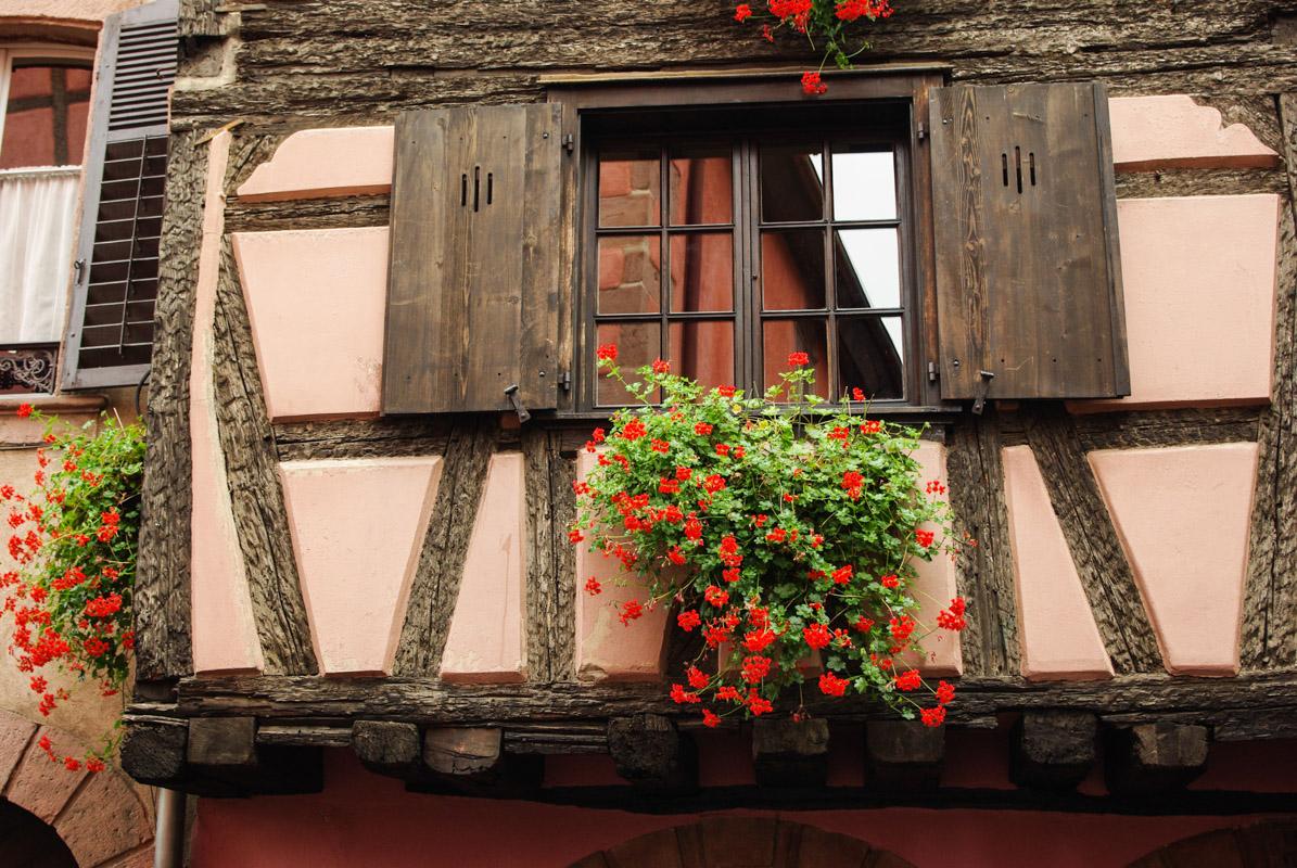 balcon fleuri de géranium à Kaysersberg