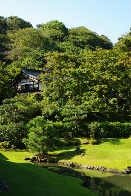 jardin - temple Kencho-ji - Kamakura