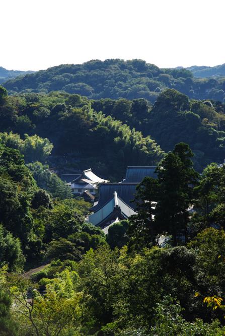 Panorama sur le temple Kencho-ji - Kamakura
