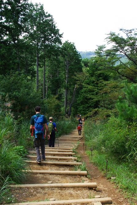 sentier de randonnée - Takao San