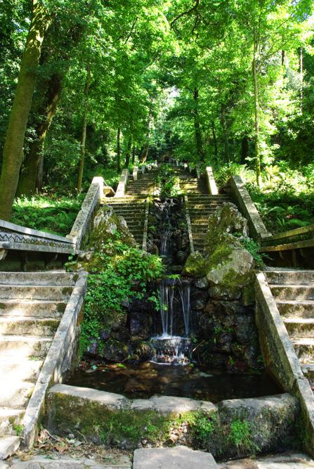 Fonte Fria - Forêt de Bussaco