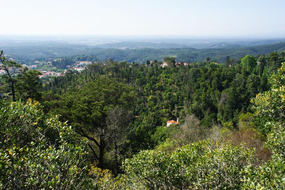 Panorama sur les environs de Luso