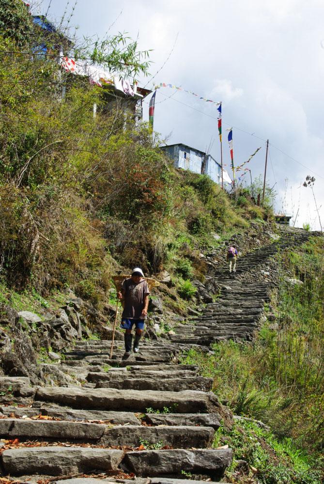 escaliers en pierre du trek des Annapurnas à Chomrong