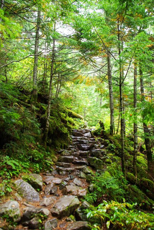 chemin de randonnée dans la vallée de Kamikochi