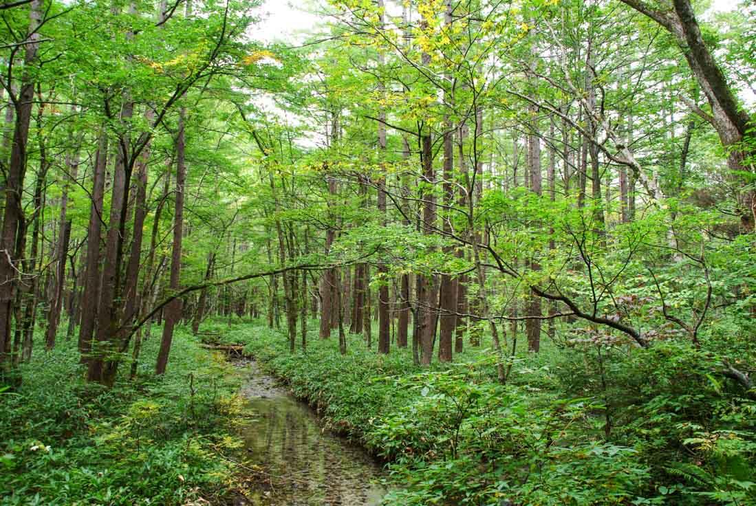 Randonn e dans la vall e de kamikochi voyager en photos - Maison de vallee au japon par hiroshi sambuichi ...