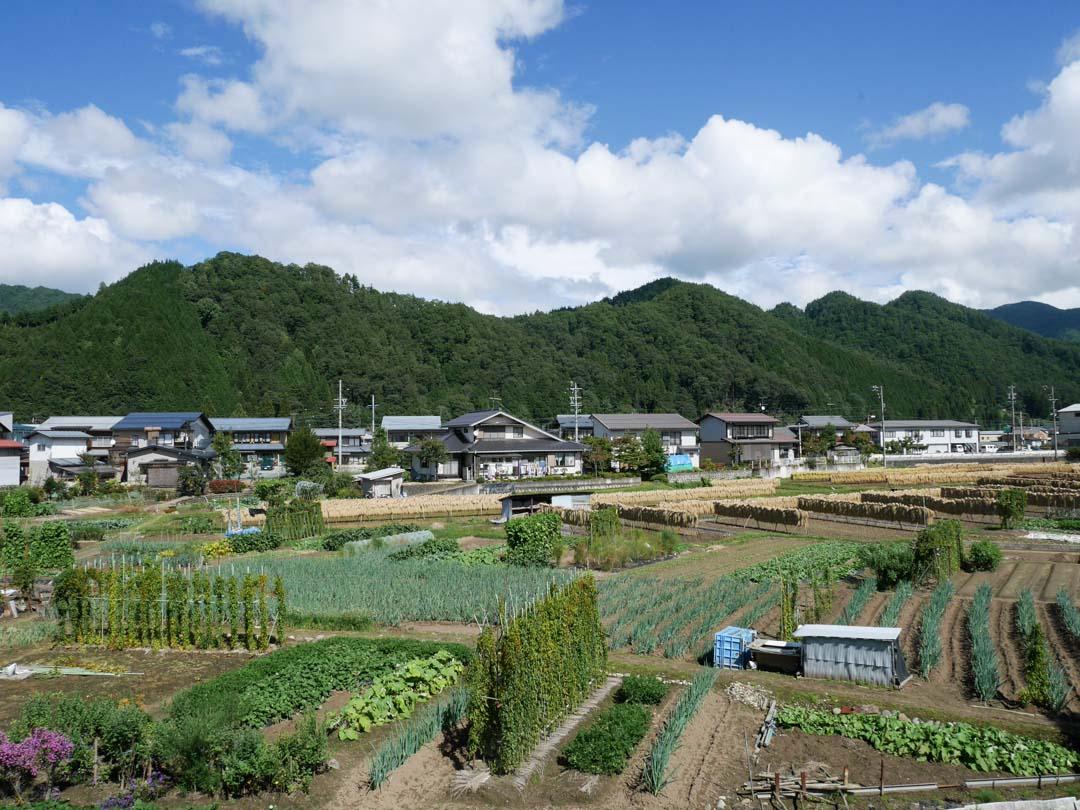 Hida-Furukawa : une excursion hors des sentiers battus dans les Alpes Japonaises